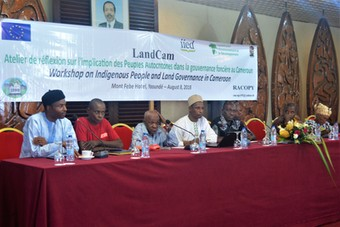 Discussion workshop on indigenous peoples' participation in land governance