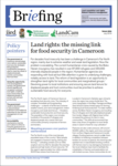 Land rights: the missing link for food security in Cameroon