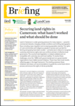 Securing land rights in Cameroon: what hasn't worked and what should be done